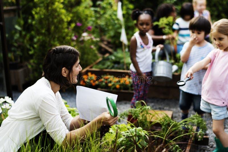 Lehrer- und Kinderschule, welche die Ökologiegartenarbeit lernt lizenzfreies stockbild
