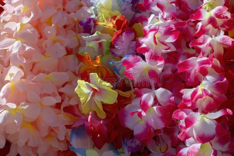Lei kwiatu girlanda w wiele colours fotografia royalty free