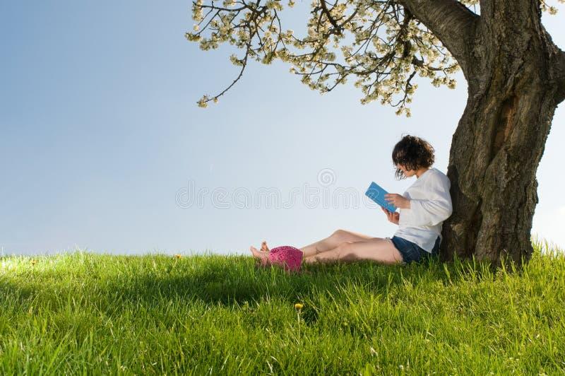 Leia um livro que senta-se sob uma árvore da flor imagens de stock royalty free