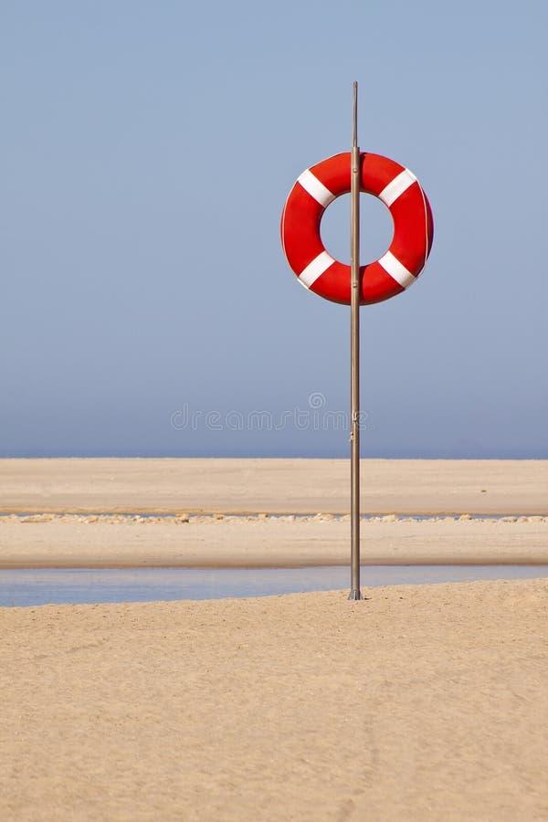 Leibwächter am Strand stockbild