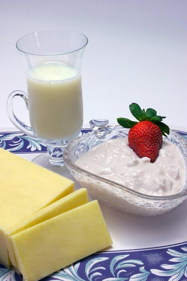 Leicht fetthaltige Milchspeisen lizenzfreies stockfoto