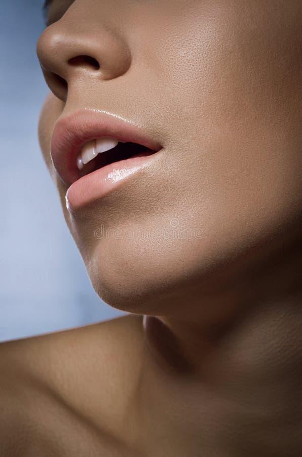 Leicht zerteilte Lippenschönheit lizenzfreie stockfotos