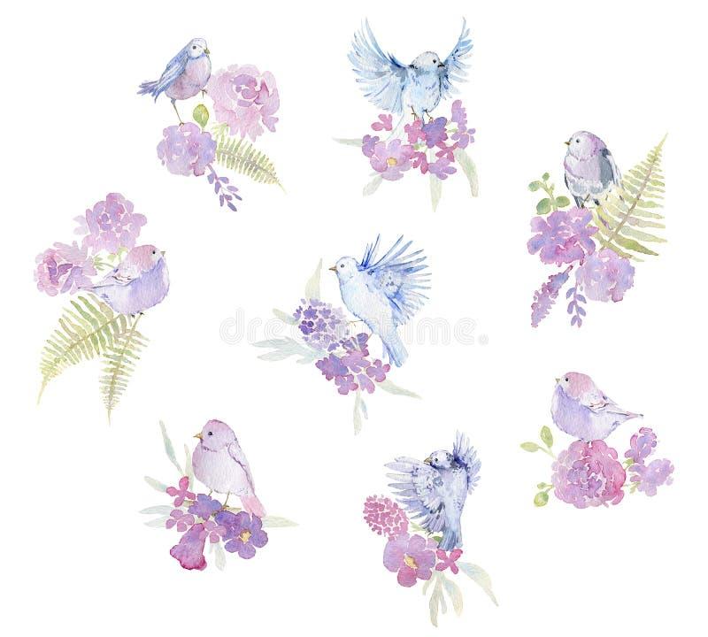 Leichte Blumensträuße mit rosa Rosen, Pfingstrosen, Glocke, Farn und Vögeln für Heiratsgrußkarte, Einladung Lokalisierte Elemente stock abbildung