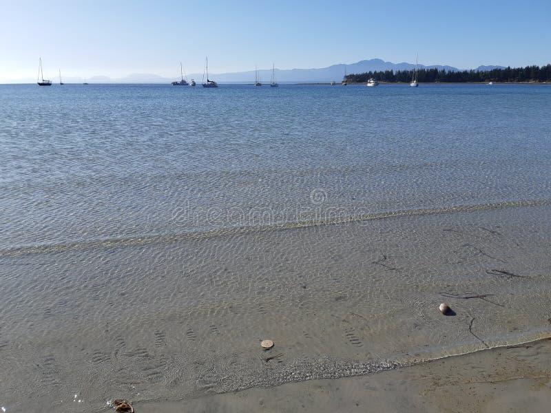 Leichte Brise an der Strandbucht von Tribune auf der Insel Hornby stockfotos