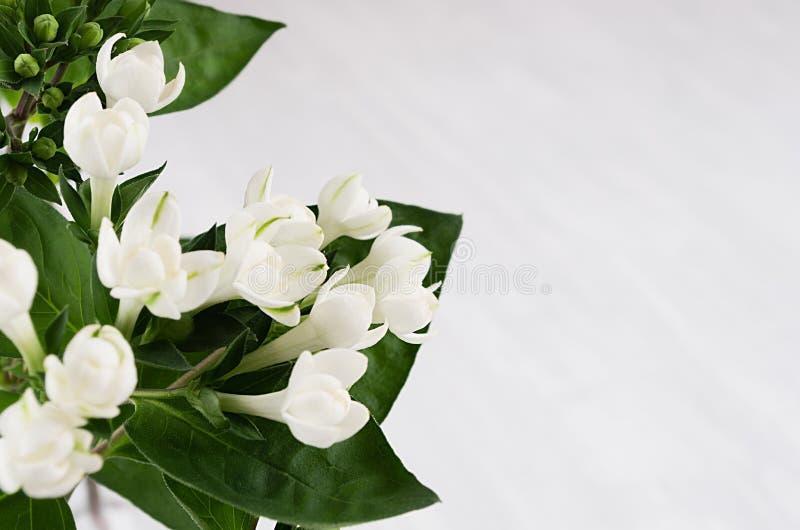 Leichte nette weiße kleine Blumen und Grünblätter auf weichem weißem hölzernem Brett, Makro, Unschärfe, Kopienraum lizenzfreie stockbilder