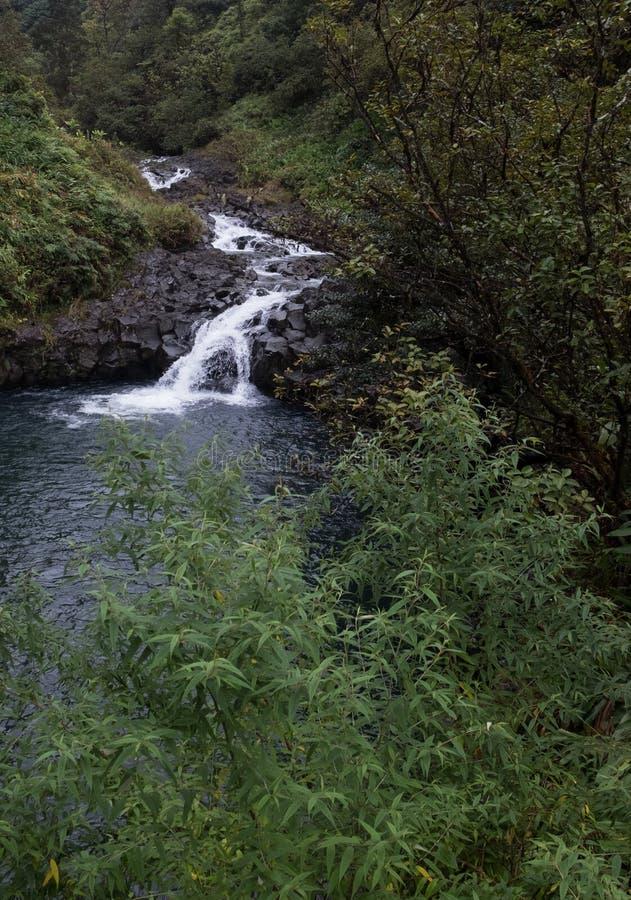 Leichter Wasserfall lizenzfreie stockfotografie