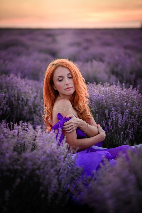 Leichtes Porträt der jungen rothaarigen Frau, die auf dem Lavendelgebiet bei Sonnenuntergang sitzt stockfoto