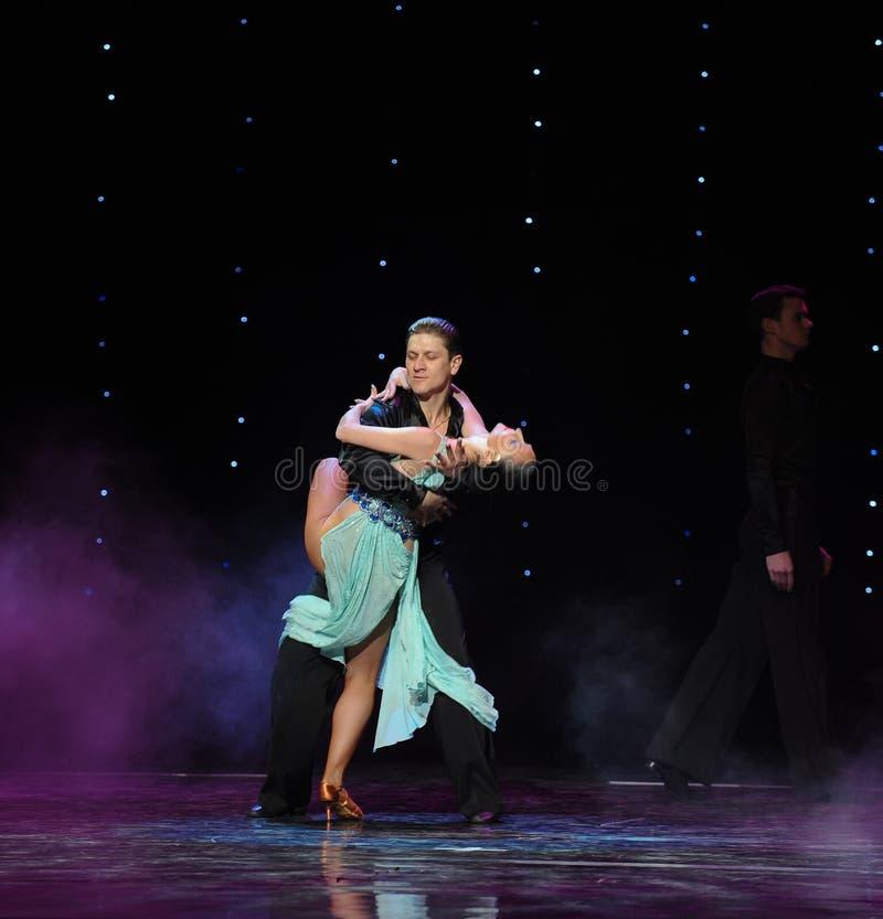 Leid het verward leven alsof dronken of in een droom-flamingo de dans-de werelddans van Oostenrijk stock afbeeldingen