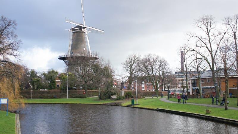Leiden flod nära en väderkvarn royaltyfri foto