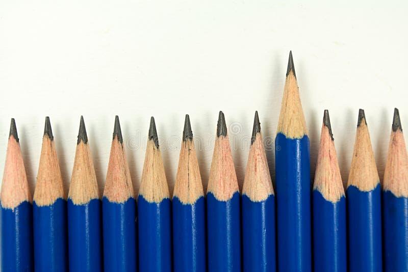 Leider van de potloden royalty-vrije stock foto's