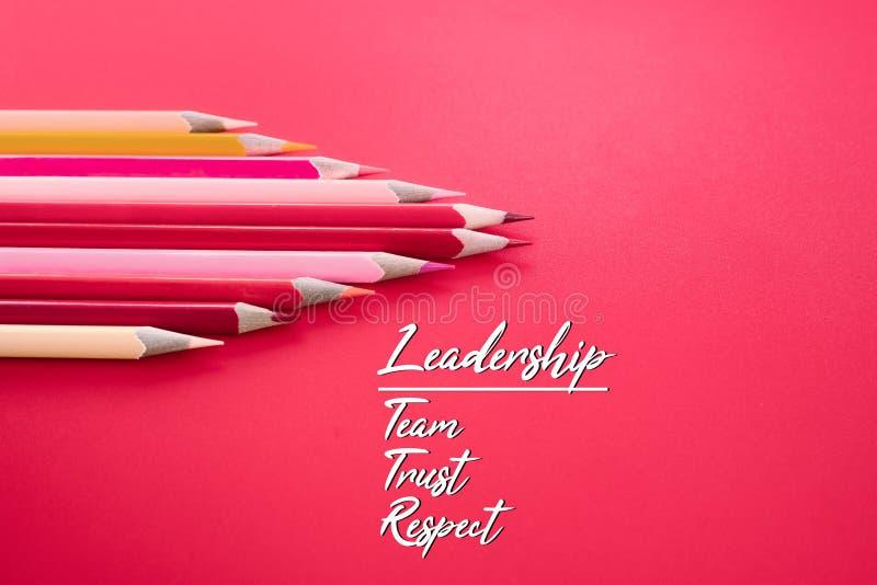 Leidings bedrijfsconcept het rode kleurenpotlood leidt andere kleur met woordleiding, team, vertrouwen en eerbied op roze achterg royalty-vrije stock foto