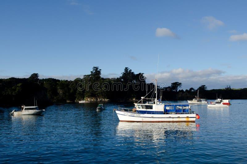 Leigh - Новая Зеландия стоковые фотографии rf