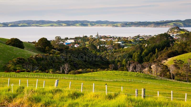 Leigh North Island New Zeland immagine stock