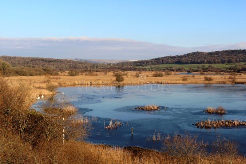 Leighton青苔RSPB自然保护的冻湖 免版税图库摄影