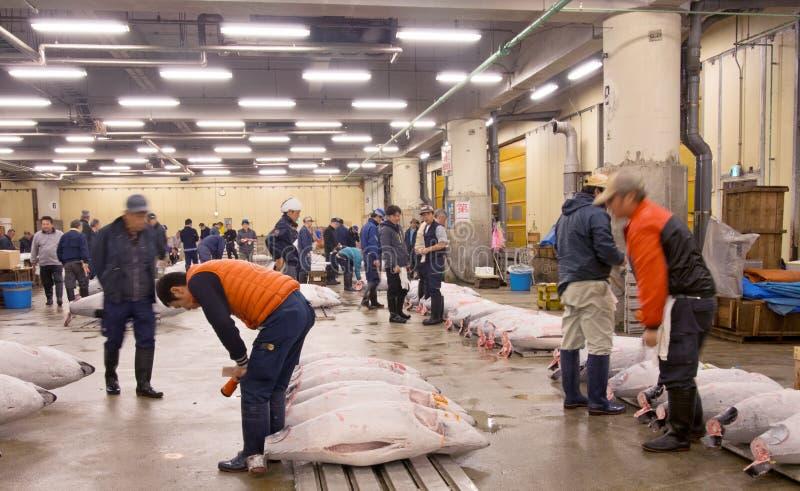 Leilão do atum no mercado de peixes tokyo do tsukiji japão imagens de stock
