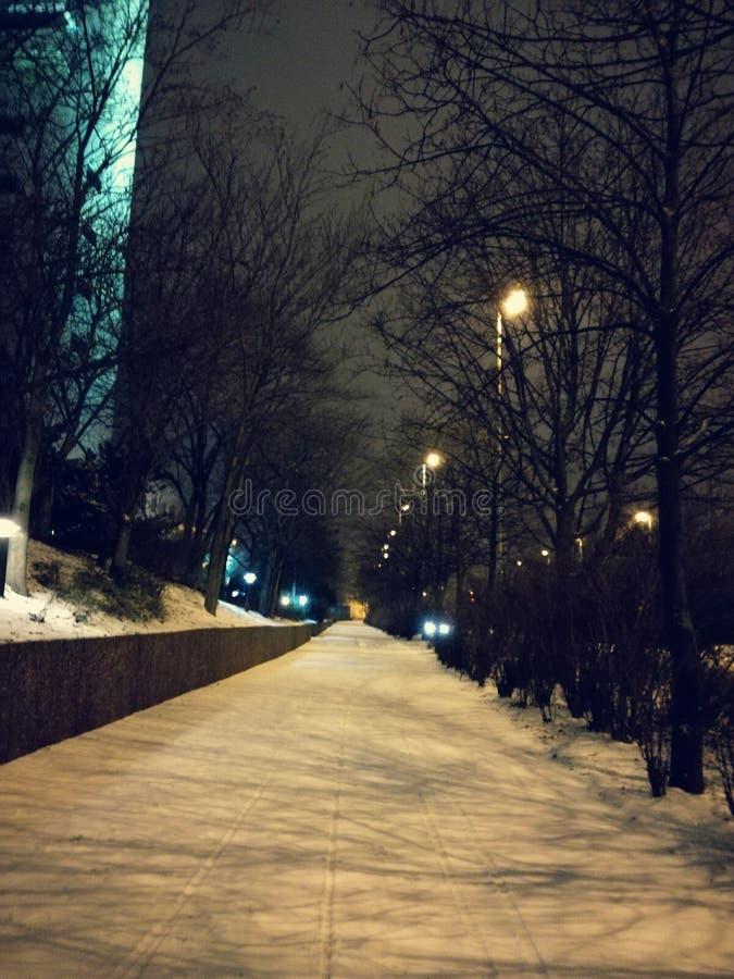 Leipzig vid natt royaltyfri fotografi