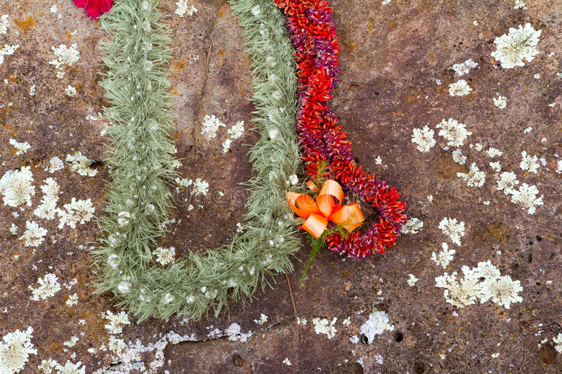 Leis on Hawaiian Birthing Stones. These beautiful flower leis have been placed on the birthing stones in Hawaii on the north shore of Oahu. These historical royalty free stock photo