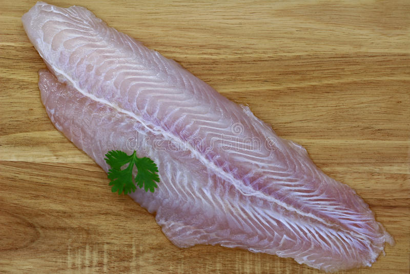 Leiste von Süßwasserfischen, Pangasius stockfotografie