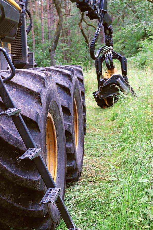 Leistungsfähige Waldmaschine, hölzerne Erntemaschine lizenzfreie stockfotos