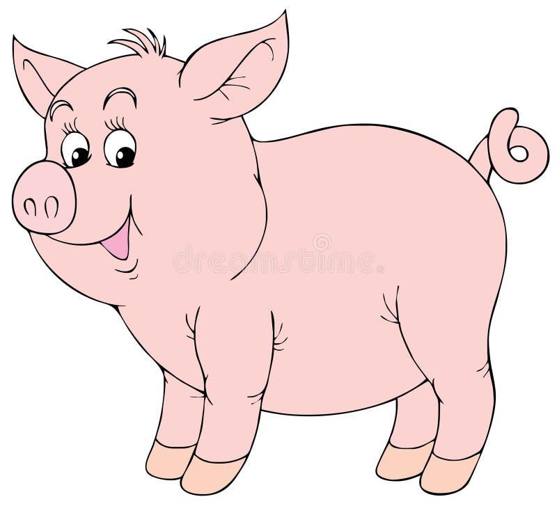 Leitão cor-de-rosa