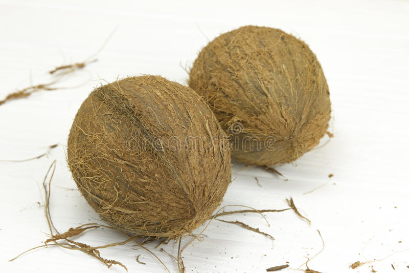 Leite de coco orgânico branco marrom tropical fresco da polpa de dois cocos no fundo branco de madeira imagem de stock