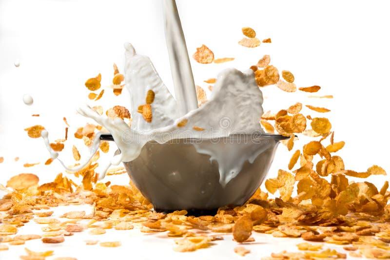 Leite de derramamento nos flocos de milho que criam o respingo imagens de stock