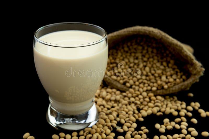 Leite de feijão de soja imagem de stock