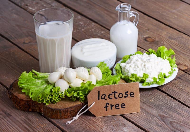 Leite, iogurte e queijo com fundo fotografia de stock