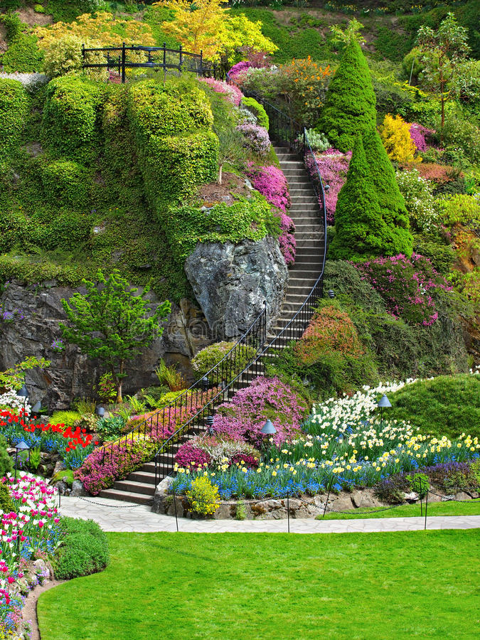 Leiter im versunkenen Garten von Butchart-Gärten stockfoto