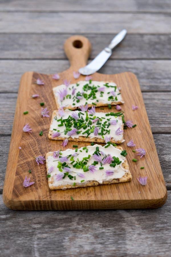 Leiteria e propagação de queijo creme lactose-livre do vegetariano feitas do cashe fotos de stock