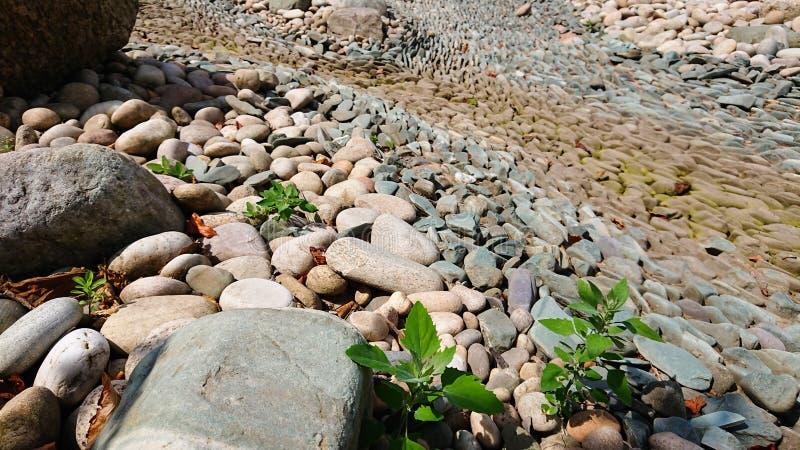 Leito fluvial seco das pedras foto de stock