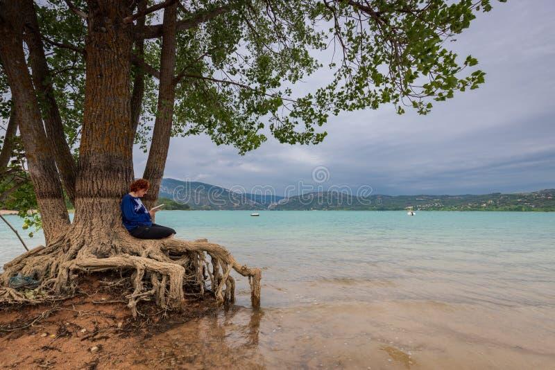 Leitura da mulher que senta-se em uma árvore na costa de um lago imagens de stock