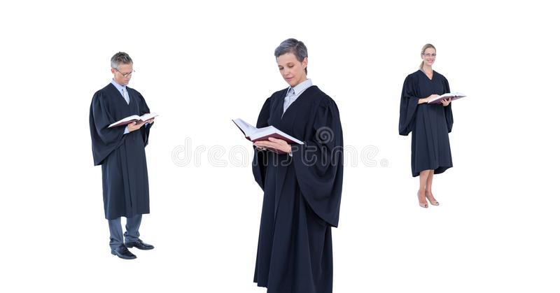 Leitura do grupo dos juizes fotos de stock