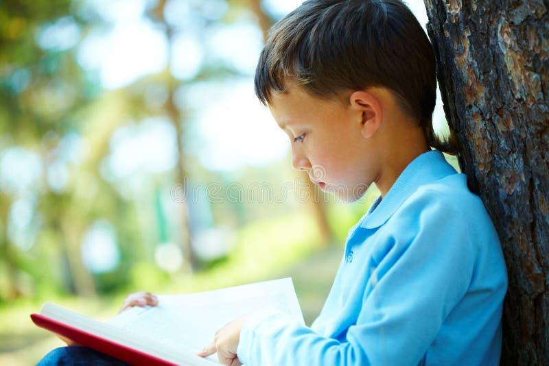 Leitura do menino fotos de stock