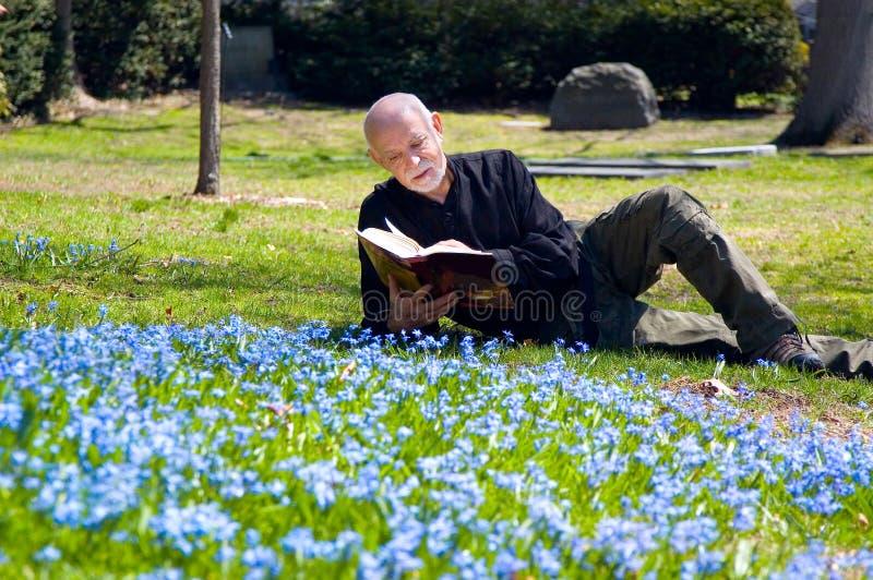 Leitura madura do homem ao ar livre fotografia de stock