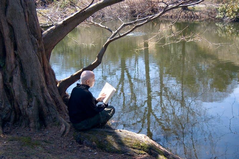 Leitura madura do homem ao ar livre fotografia de stock royalty free