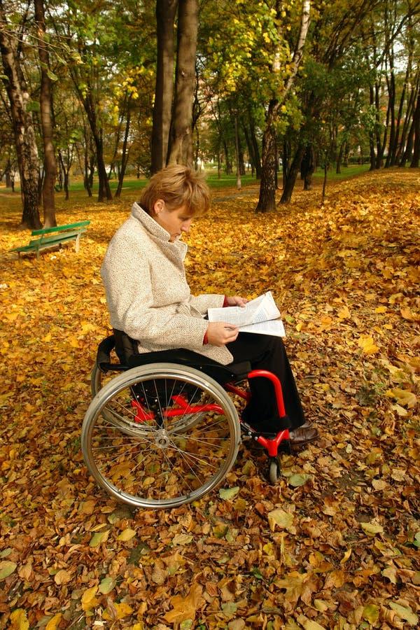 Leitura no parque fotografia de stock