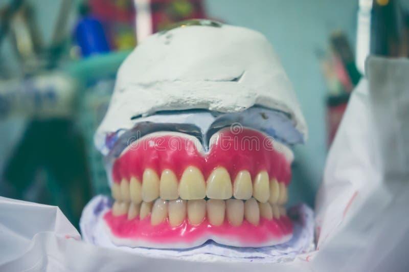 Lejnia ludzcy zęby Oralny zdrowia pojęcie obraz royalty free