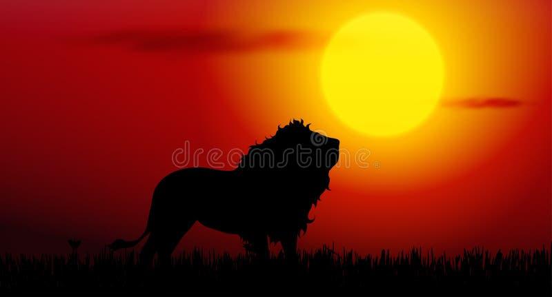 lejon på solnedgång stock illustrationer