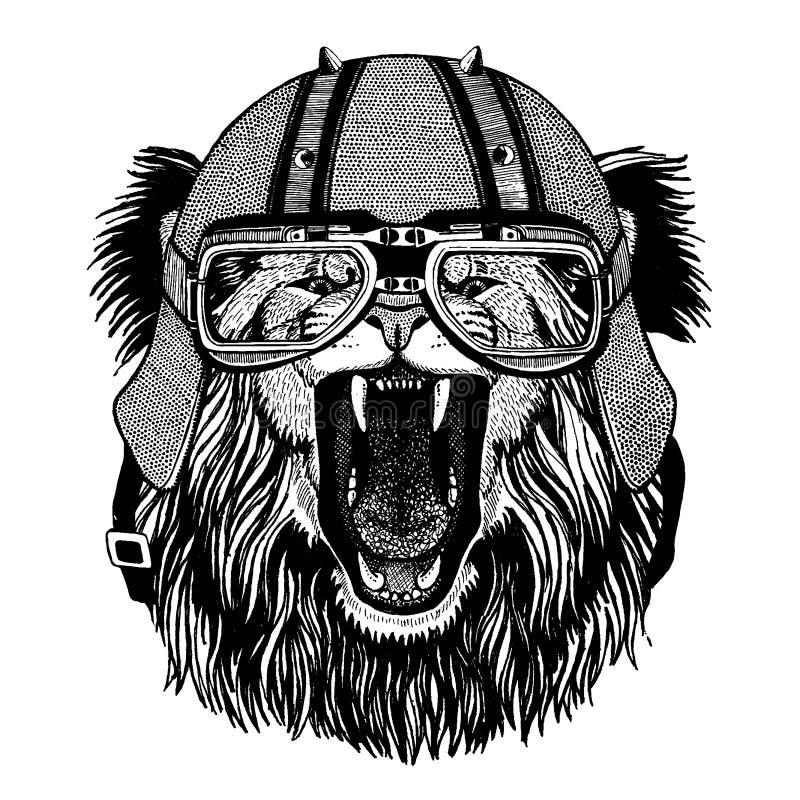 Lejon som bär en motorcykel, aero hjälm Utdragen bild för hand för tatueringen, t-skjorta, emblem, emblem, logo, lapp stock illustrationer