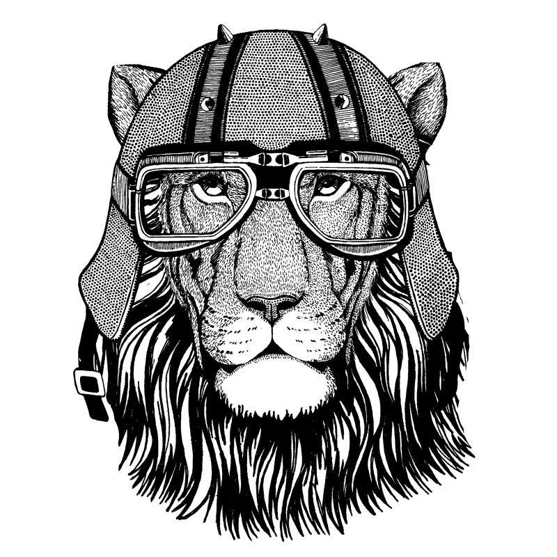 Lejon som bär en motorcykel, aero hjälm Utdragen bild för hand för tatueringen, t-skjorta, emblem, emblem, logo, lapp royaltyfri illustrationer