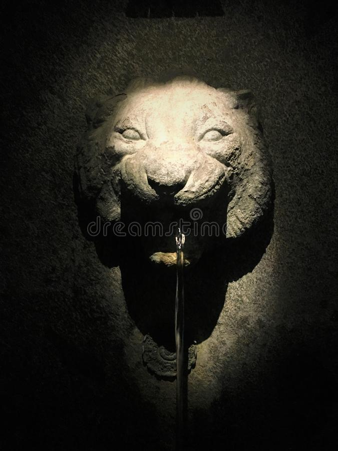 Lejon, springbrunn, ljus och vatten arkivfoto