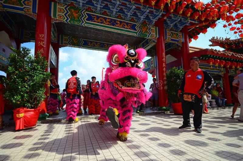 Lejondans under kinesisk beröm för nytt år royaltyfri foto