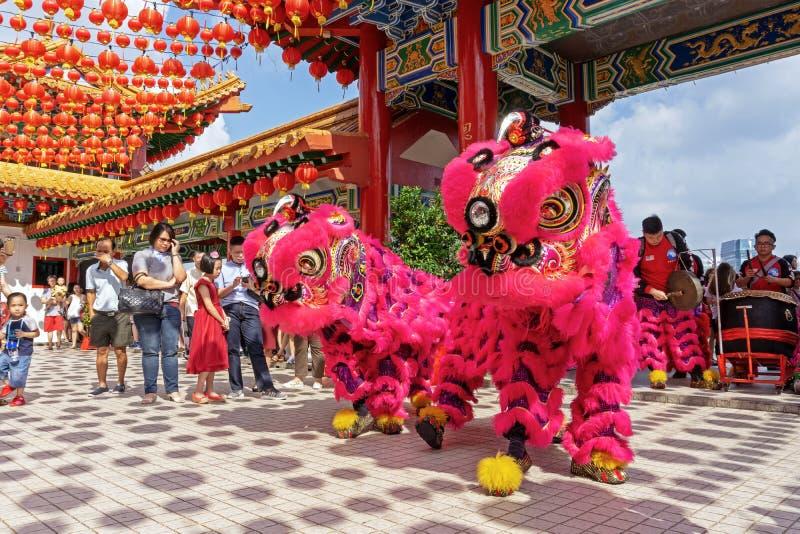 Lejondans under kinesisk beröm för nytt år i den Thean Hou templet royaltyfria bilder