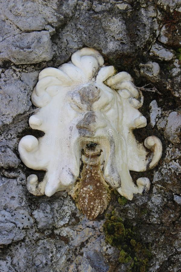 Lejonet formade profilemblemuppsättningen in i stenväggen arkivfoton