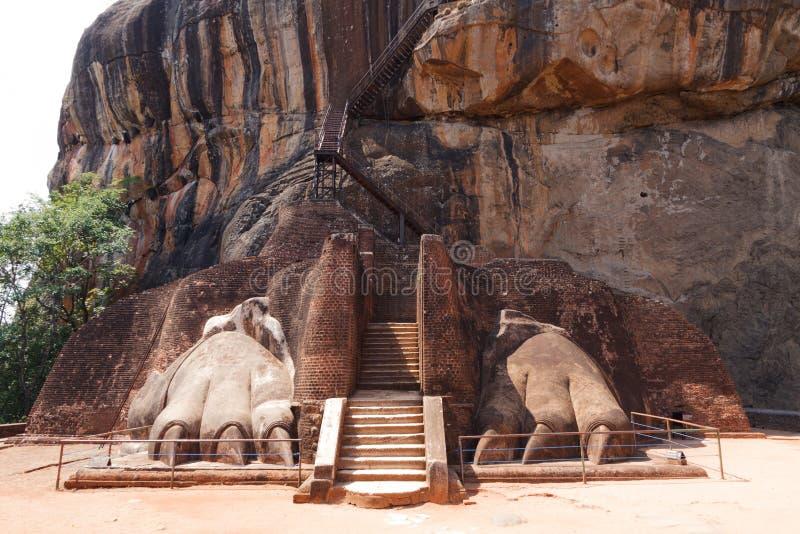 Lejonet tafsar bana på Sigiriya vaggar, Sri Lanka royaltyfria bilder