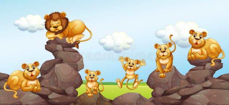 Download Lejonfamilj i fältet vektor illustrationer. Illustration av safari - 78731014