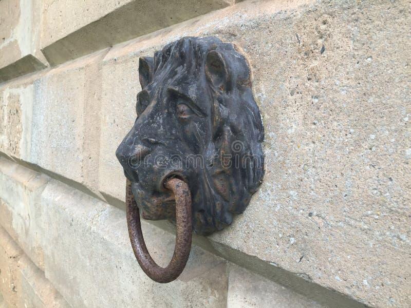 Lejonhuvud som förtöjer punkt arkivbild