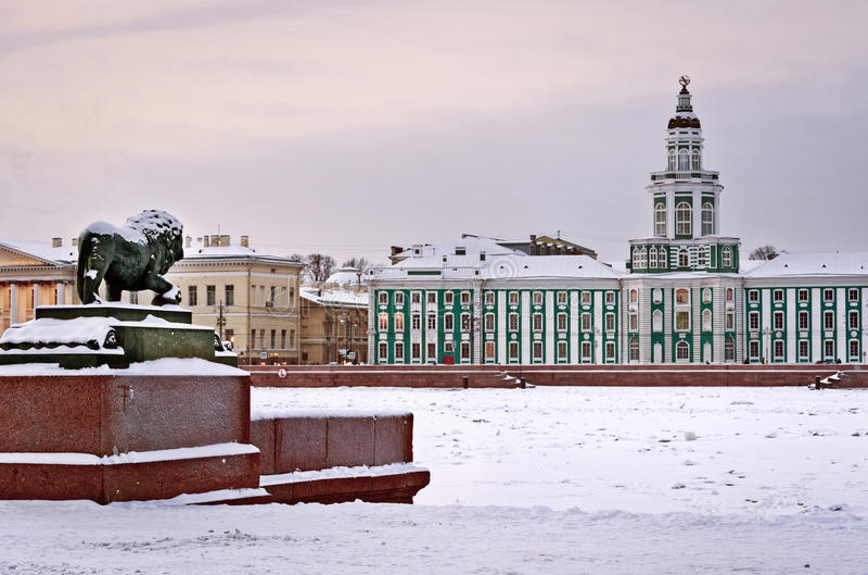 Lejonskulpturen i St Petersburg, Ryssland royaltyfri bild