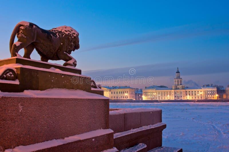 Lejonskulpturen i St Petersburg, Ryssland arkivbilder